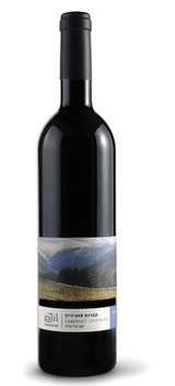 Galil Mountain Cabernet Sauvignon 2011