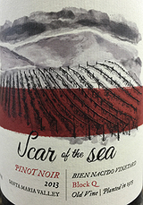 Scar of the Sea Bien Nacido Block Q Pinot Noir 2013