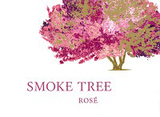 Smoke Tree Rose