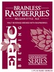 Epic Brewing (Utah) Brainless Raspberries