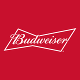 Budweiser Bud Light Seltzer Variety Pack