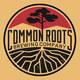 Common Roots Brewing Pillow Gossip