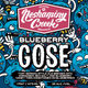 Neshaminy Creek Brewing Blueberry Gose