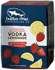 Dogfish Head Strawberry & Honeyberry Vodka Lemonade